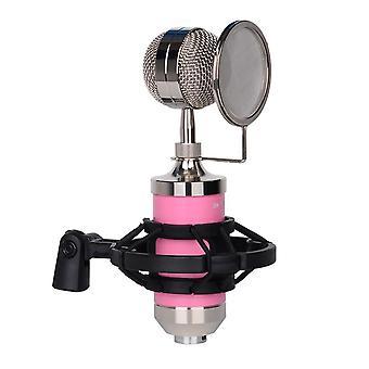 Opname microfoon cardioïde condensator microfoon kit