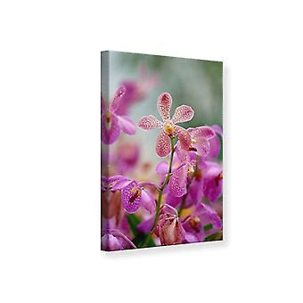Canvas Print orchidee Dots