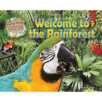 Welcome to the Rainforest by Honor Head - 9781911341543 Book