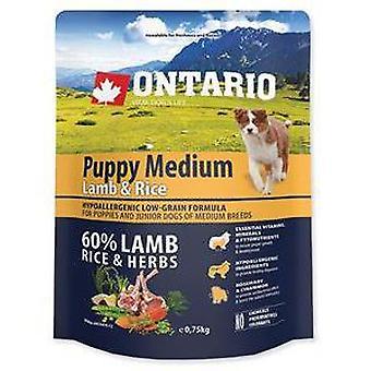 Ontario Puppy Medium Lamb & Rice (Dogs , Dog Food , Dry Food)