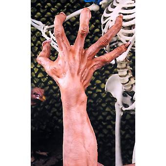 Ultimate hirviö kädet lihaa