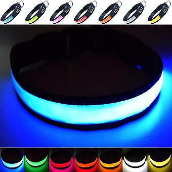 Pet leashes super bright usb rechargeable led dog safety collar - great visibility improved safety - 4