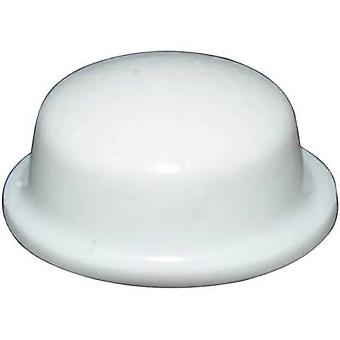 TOOLCRAFT PD2115W mund selvklæbende, cirkulær hvid (Ø x H) 11,1 mm x 5 mm 1 computer(e)