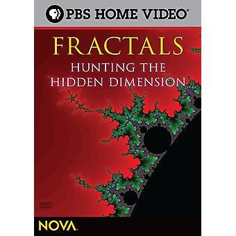 Nova - Fractals: Hunting the Hidden Dimension [DVD] USA import