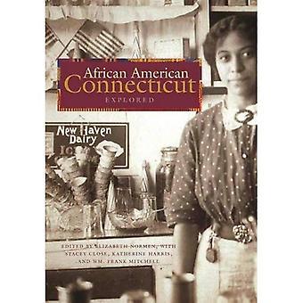 African American Connecticut verkend (granaat Books)