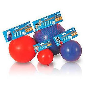 Firma kuli Boomer zwierząt (psy, zabawki & sportu, piłki)