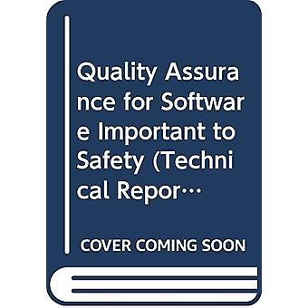 Quality Assurance for Software Important to Safety by International A
