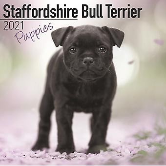 Staffordshire Bull Terrier Puppies 2021 Wall Calendar by Created by Avonside Publishing Ltd