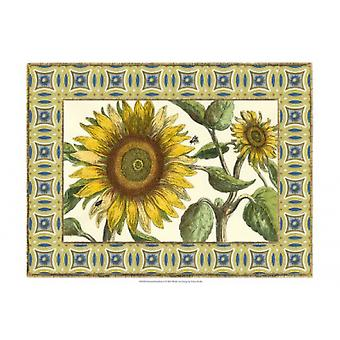 Classical Sunflower I Poster Print by Vision Studio (19 x 13)