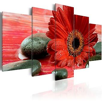 Artgeist Canvas Print Gerbera Flower And Zen Stones