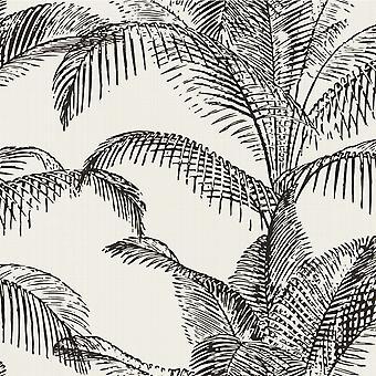 Pandore Palm Leaves Wallpaper White / Black Rasch 406801