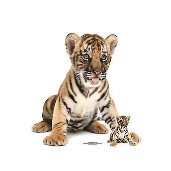 Bengal Tiger Cub Lifesize Cardboard Cutout / Standee / Standup / Standee