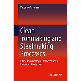 Clean Ironmaking and Steelmaking Processes by Cavaliere & Pasquale