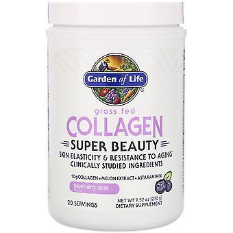 Garden of Life, Grass Fed Collagen, Super Beauty, Blueberry Acai, 9.52 oz (270 g