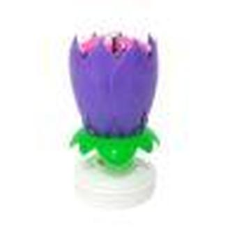 Music Candle Double Flower Blossoms Birthday Cake Flat Rotating Electronic