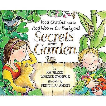 Secretos del jardín: las cadenas alimentarias y la cadena alimenticia en nuestro patio trasero