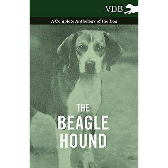 The Beagle Hound  A Complete Anthology of the Dog by Various