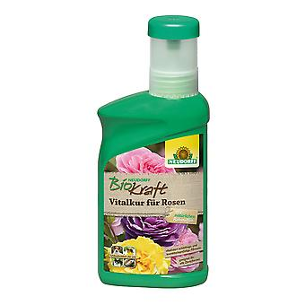 NEUDORFF BioKraft® Vital cure for roses, 300 ml