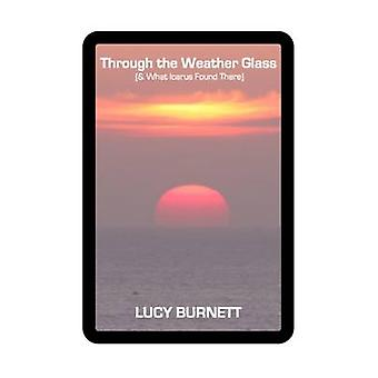 Through the Weather Glass  What Icarus Found There by Burnett & Lucy