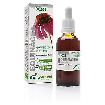 Soria Natural Echinacea Extract