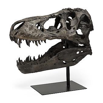 Aito replica T Rex kallo veistos