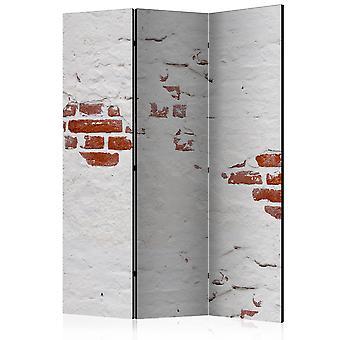 Vouwscherm - Stony Secret [Room Dividers]