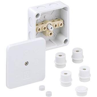 ה40240701 בקופסא המשותפת (L x W x H) 80 x 80 x 38 mm אפור IP54