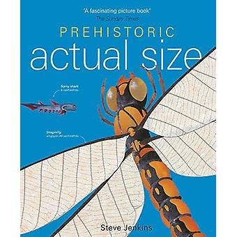 Prehistoric Actual Size (Revised edition) by Steve Jenkins - 97818478