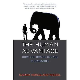 The Human Advantage: A New� Understanding of How Our Brain Became Remarkable