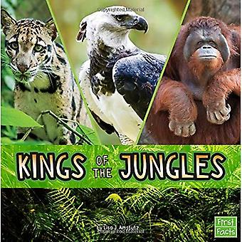 Kings of the Jungles (Animal Rulers)