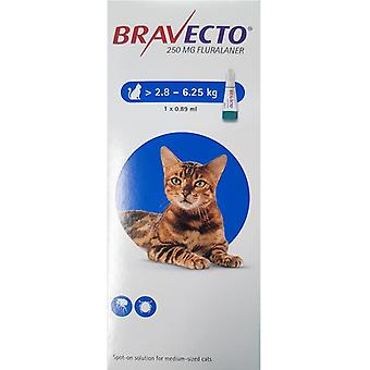 Bravecto Topical For Cats 2.8-6.25 kg
