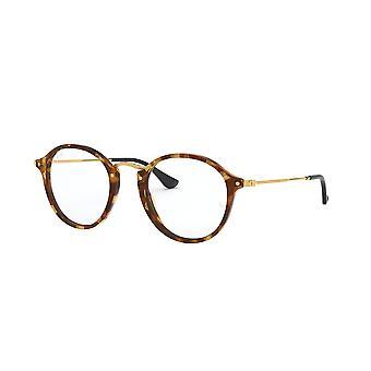 Ray-Ban RB2447V 5494 Brown Havana Glasses