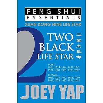 Feng Shui Essentials -- 2 Black Life Star