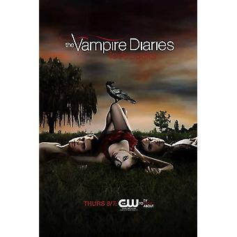 The Vampire Diaries - style C Movie Poster (11 x 17)