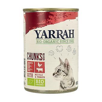 القط والدجاج الغذاء مع القراص وصلصة الطماطم 405 ز