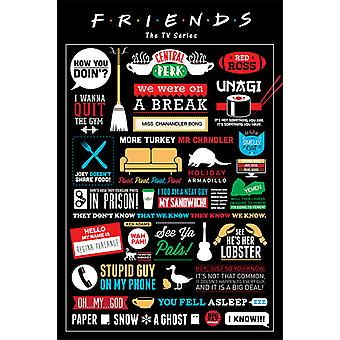 Friends - Infographic Maxi Poster
