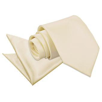 Champagne slätten Satin slips & Pocket Square Set