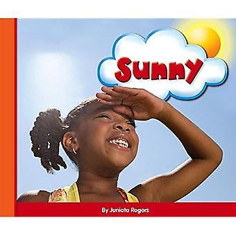 Sunny (Eye on the Sky)