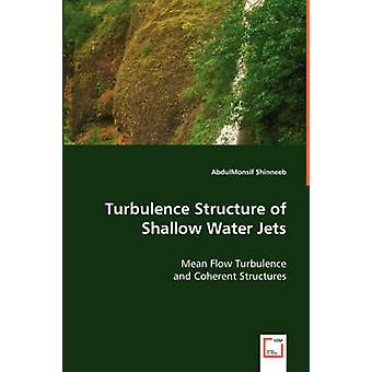 Estrutura de turbulência de jatos de água superficial por Shinneeb & AbdulMonsif