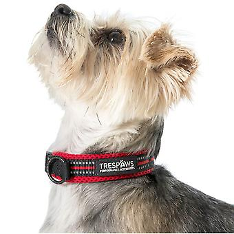 Trespass Mens Scooby Soft Padded Reflective Dog Collar