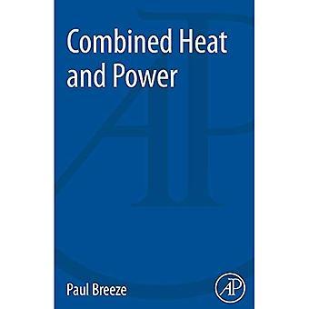 Production combinée de chaleur et d'électricité