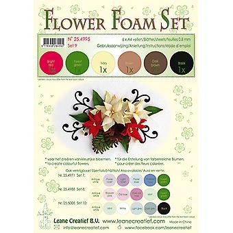 סט קצף פרח ליאן קריאטיף A4 9 חום-אדום-ירוק