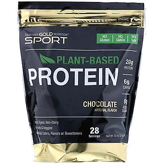California Gold Nutrition, Chocolate Plant-Based Protein, Vegan, Easy to Digest,