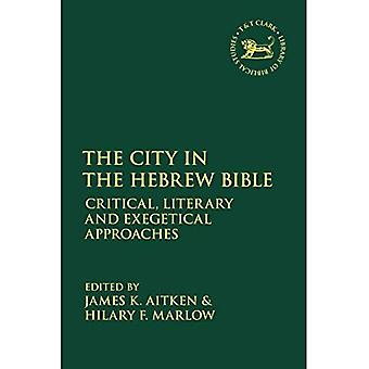 The City in the Hebrew Bible: Critical, Literary and Exegetical Approaches (The Library of Hebrew Bible/Old Testament Studies)