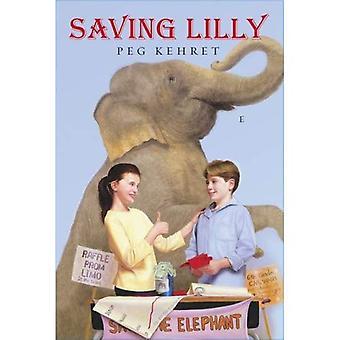Säästää Lilly