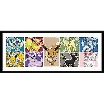 Pokemon Eevee Evolution kehystetty levy 30 * 75cm