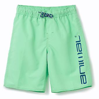 Animal Boys Tannar Boardshorts | Freeze Green