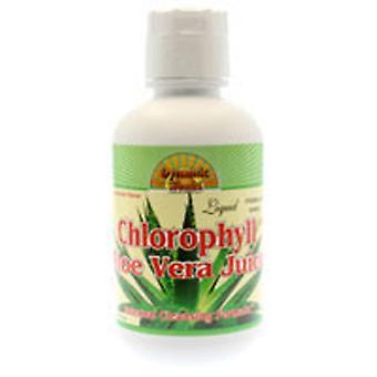 Dynamic Health Laboratories Chlorophyl Liquid With Aloe Vera, 16 Oz