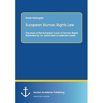 European Human Rights Law - The Work of the European Court of Human Ri