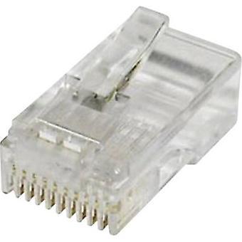 """توصيل وحدات التوصيل، عدد دبابيس مستقيمة: econ """"واضحة"""" MPL10/10 10 الاتصال pc(s) 1 MPL10/10"""